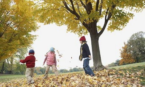 kids-playing-fall-leaves
